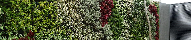 Jardines verticales newgreen new green for Beneficios de los jardines verticales
