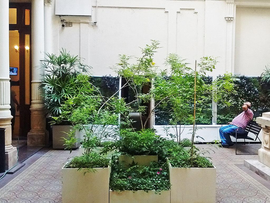 Dise o y construcci n de terrazas verdes y jardines for Techos verdes y jardines verticales