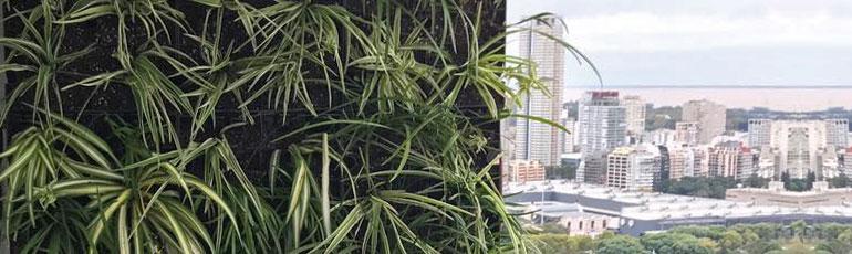 Jard n vertical en edificio vista buenos aires new green for Jardines verticales buenos aires