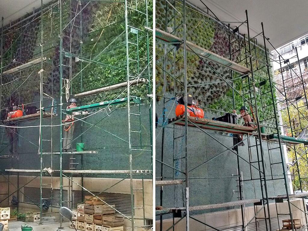 jardín vertical en edificio quantum beruti