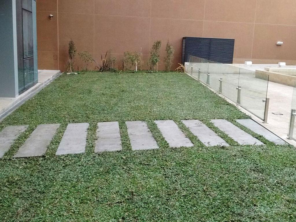 Dise o y construcci n de terrazas verdes y jardines for Jardines verticales construccion