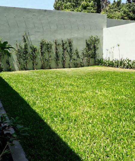 Monroe 1122 Terraza Verde