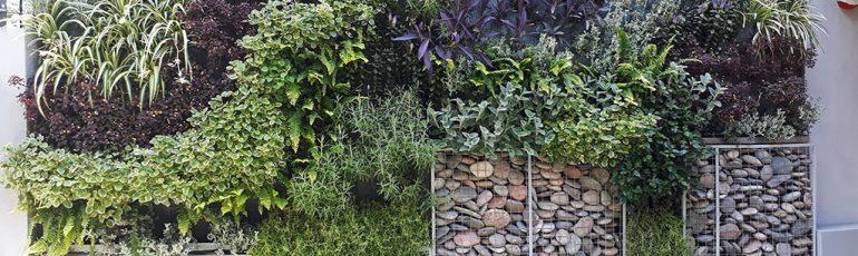 Nuñez Jardín Vertical con Gaviones