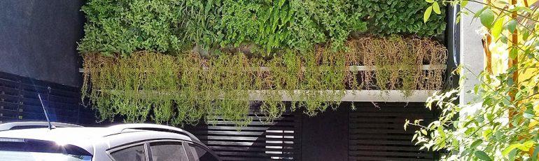 Larralde jardín vertical